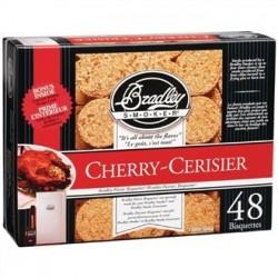 Bradley Food Smoker Bisquettes BTCH48