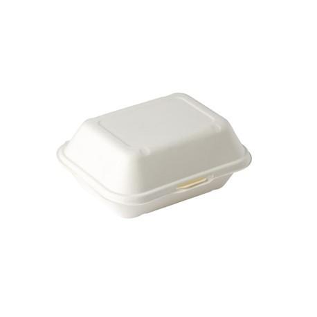 Biodegradable Food Box