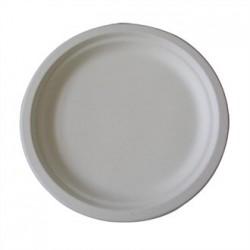 Large Biodegradable Plates