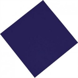 Fasana Lunch Napkin Blue 330mm