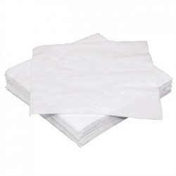 Fiesta White Cocktail Napkin 250mm pack of 2000