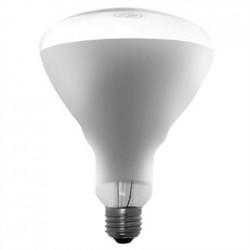 Buffalo 250W Shatterproof Heat Lamp ES