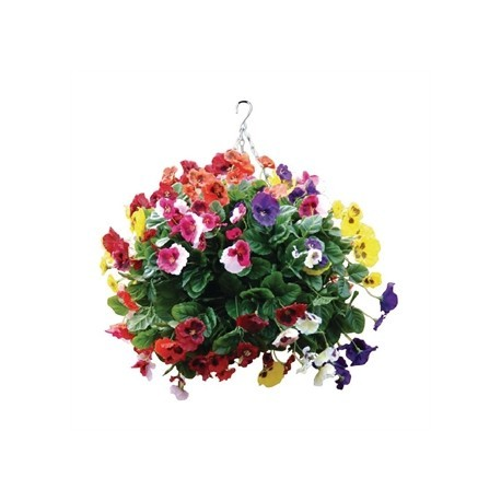"22"" Mixed Colours Pansy Ball"