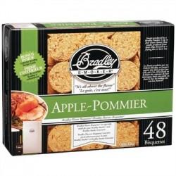 Bradley Food Smoker Bisquettes BTAP48