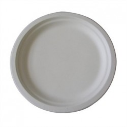Large Biodegradable Plates