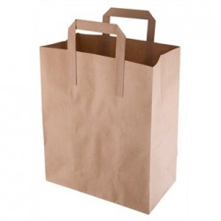 Recyclable Brown Paper Bags Medium