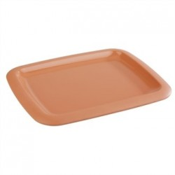APS Tierra Terracotta Effect Tray 1/2GN