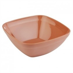 APS Tierra Terracotta Effect Square Bowl 250mm