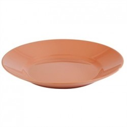 APS Tierra Terracotta Effect Round Platter 320mm