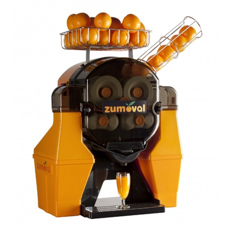 Zumoval Big Basic