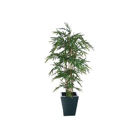 Natural Bamboo 1800mm